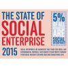 Part of Larger Infographic relating to State of the Social Enterprise Sector . This part shows that 5% of businesses are social businesses